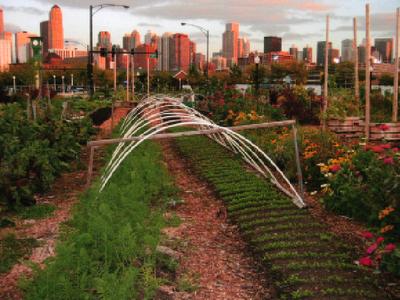 city farm